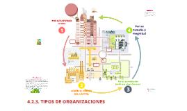4.2.3.TIPOS DE ORGANIZACIONES