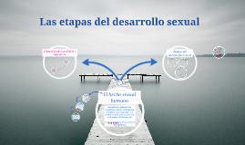 Las etapas del desarrollo sexual