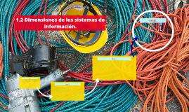 1.2 Dimensiones de los sistemas de información.