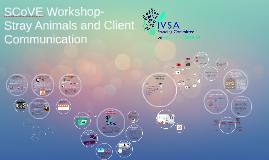 For IVSA Member Organisations- Client Communication on Stray Animal Welfare