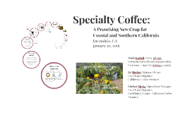 California Grown_Specialty Coffee