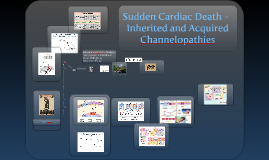 Sudden Cardiac Death - Inherited and Acquired Channelopathies