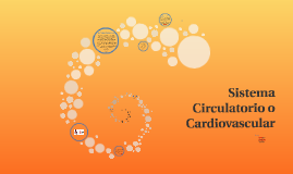 Sistema Circulatorio o Cardiovascular