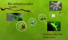 Bio-mimicry project