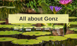 All about Gonz