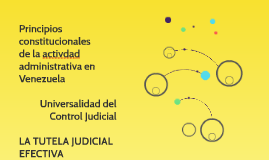 Principios constitucionales de la activdad administrativa en
