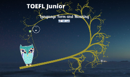 TJ 语言形式与含义