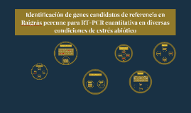 Identificación de genes candidatos de referencia en Raigrás