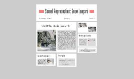 Reproduction: Snow Leopard