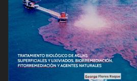 Tratamiento biológico de aguas superficiales y lixiviados, b