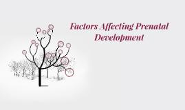 factors affecting prenatal development pdf