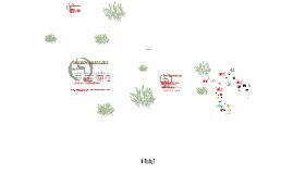 Copy of SINCRON INSPEÇÕES
