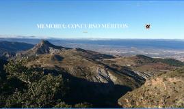 Copy of MEMORIA PUESTOS TRABAJO