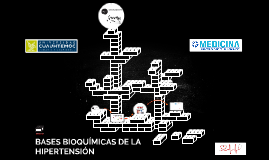 BASES BIOQUÍMICAS DE LA HIPERTENSIÓN