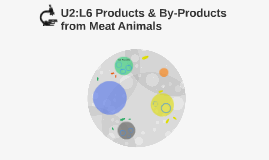 U2:L6 Products & By-Products from Meat Animals