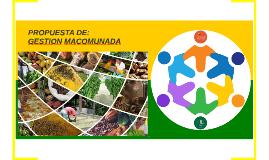 PROPUESTA DE GESTION MACOMUNADA