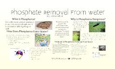 phosphoruss