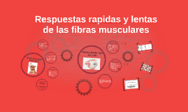 Respuestas rapidas y lentas de las fibras musculares