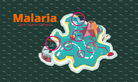 Malaria Chain of Infection