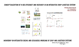 Conceptualization of N use efficiency and recovery in an integrated crop-livestock system