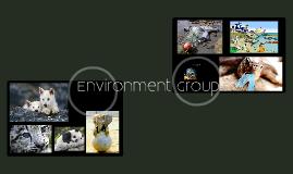 Enviro Group