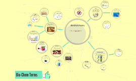 Bio-Chem Terms