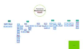 Funciones Metabolicas del Higado upgch