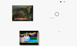 Recepción del noticiero, del televidente  al ciudadano