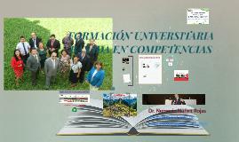 FORMACIÓN UNIVERSITARIA BASADA EN COMPETENCIAS