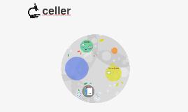 svampeceller