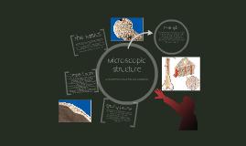 Microscopic Structure