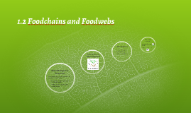 1.2 Foodchains and Foodwebs