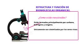 Copy of ESTRUCTURA Y FUNCIÓN DE BIOMOLECULAS ORGANICAS.