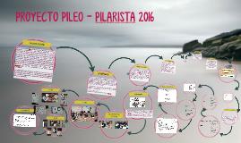 PROYECTO PILEO - PILARISTA