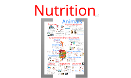 Chapter 33 - Animal Nutrition