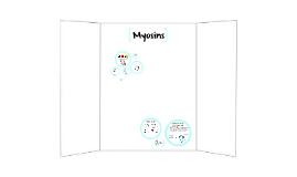 Copy of Myosins