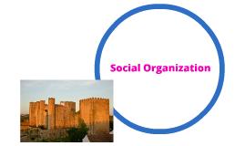 Social Orginization