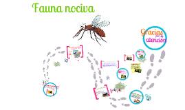 Copy of Copy of Flora y fauna nociva