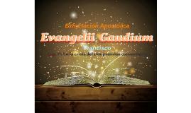 Evangelii Gaudium Cap II