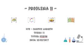 Problema ii