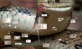 ACCIDENTES OFÌDICOS Y ANMALES PONZOÑOSOS