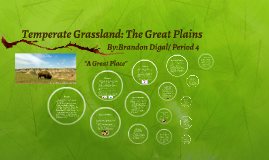 Temperate Grassland Biome: The Great Plains