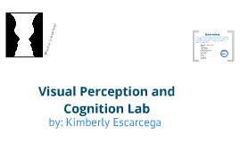 Visual Perception and Cognition Lab