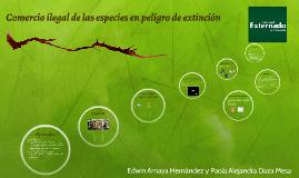 Comercio ilegal de las especies en peligro de extinción