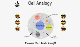 Cell Analogy: Human Body