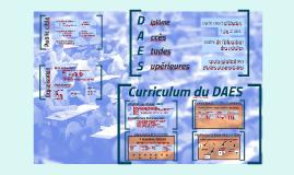 Curriculum DAEU Zürich