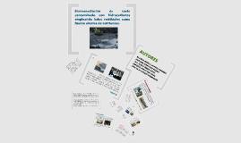 Biorremediación de suelo contaminado con hidrocarburos emple