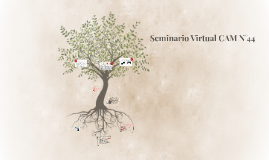 Seminario Virtual CAM N°44