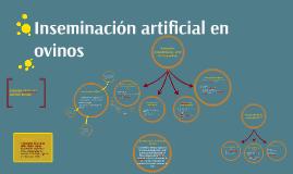 Copy of inseminacion artificial en ovinos
