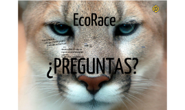 EcoRace Presentation